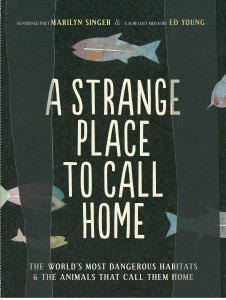 A Strange Place to Call Home by Marilyn Singer